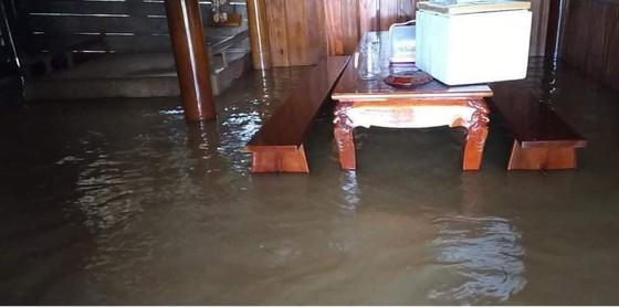 Hà Tĩnh khẩn trương tổ chức sơ tán các hộ dân ở vùng có nguy cơ cao lũ quét, sạt lở đất và ngập lụt sâu ảnh 5