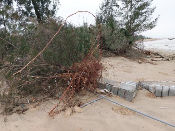 Ngư dân Hà Tĩnh gấp rút đưa tàu thuyền vào nơi tránh trú trước bão số 8 ảnh 6
