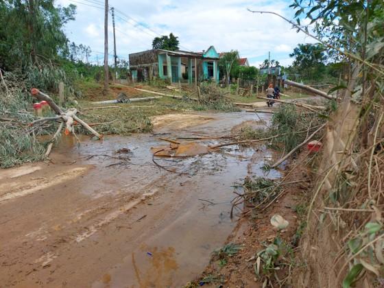 Đà Nẵng, Quảng Nam ngổn ngang sau bão  ảnh 7