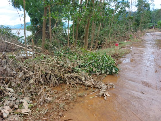 Đà Nẵng, Quảng Nam ngổn ngang sau bão  ảnh 6