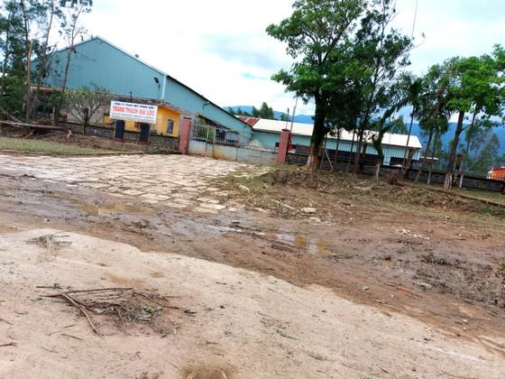 Đà Nẵng, Quảng Nam ngổn ngang sau bão  ảnh 9