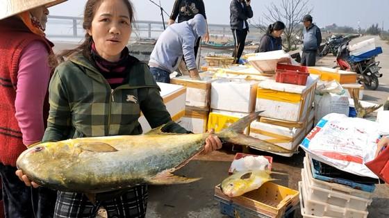 Ngư dân Hà Tĩnh trúng mẻ cá chim vây vàng khoảng 600 triệu đồng ảnh 3
