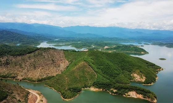 Phát hiện loài ếch mới cho khoa học tại Vườn Quốc gia Vũ Quang ảnh 1