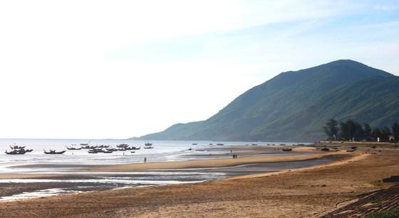 Hiện đại hóa ngành lâm nghiệp và tăng cường tính chống chịu vùng ven biển Hà Tĩnh, Quảng Bình ảnh 3
