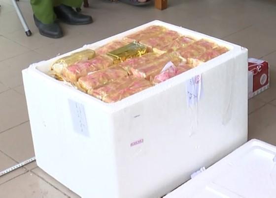 Hà Tĩnh: Bắt giữ đối tượng vận chuyển 31kg ma túy, 12.000 viên hồng phiến ảnh 2