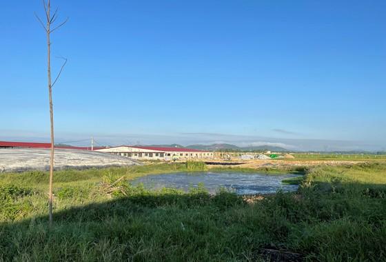 Hà Tĩnh: Xử lý vi phạm trong chăn nuôi, bảo vệ môi trường tại Dự án trang trại chăn nuôi bò sữa cao sản Bắc Hà ảnh 3