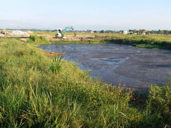 Hà Tĩnh: Xử lý vi phạm trong chăn nuôi, bảo vệ môi trường tại Dự án trang trại chăn nuôi bò sữa cao sản Bắc Hà ảnh 2