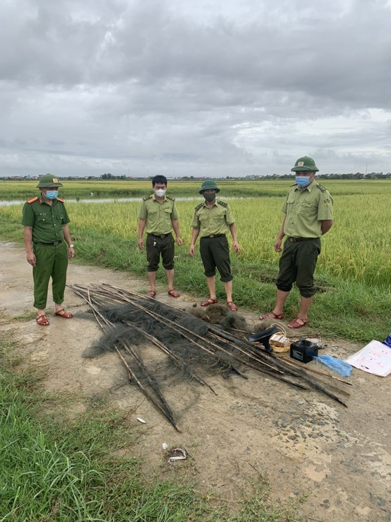 Hà Tĩnh: Tăng cường xử lý tình trạng săn bắt chim tự nhiên, động vật hoang dã ảnh 6