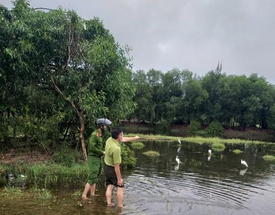 Hà Tĩnh: Tăng cường xử lý tình trạng săn bắt chim tự nhiên, động vật hoang dã ảnh 2
