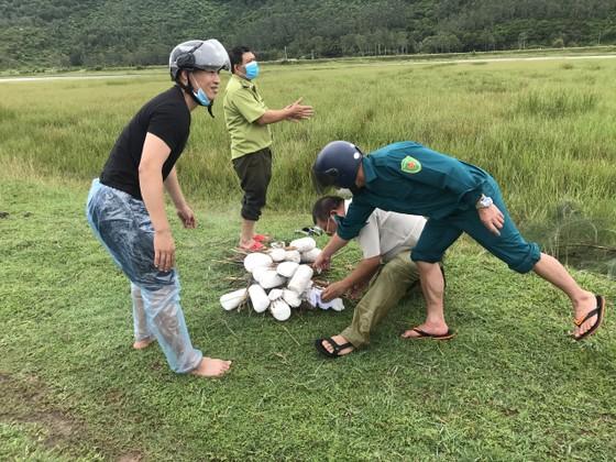 Hà Tĩnh: Tăng cường xử lý tình trạng săn bắt chim tự nhiên, động vật hoang dã ảnh 7