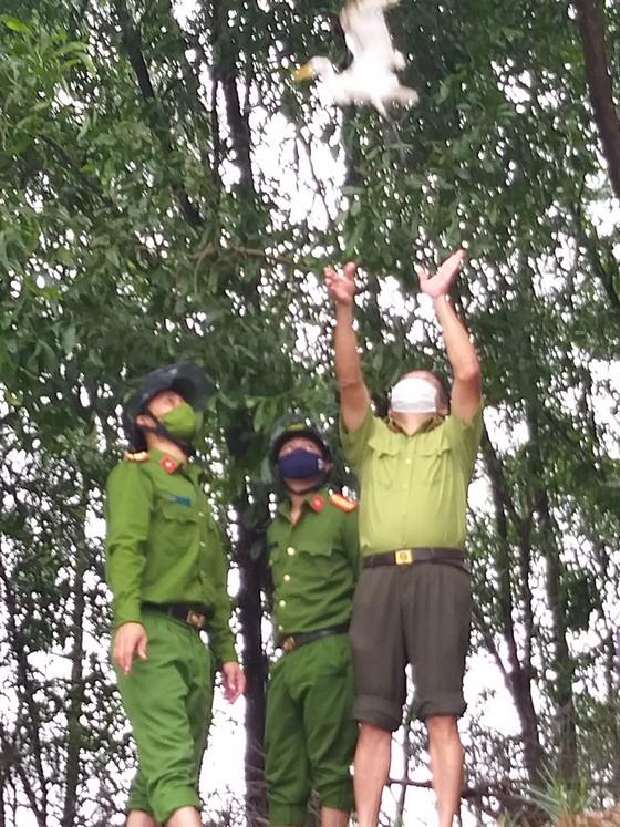 Hà Tĩnh: Tăng cường xử lý tình trạng săn bắt chim tự nhiên, động vật hoang dã ảnh 11