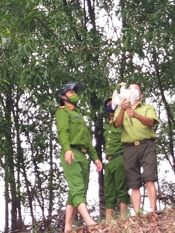 Hà Tĩnh: Tăng cường xử lý tình trạng săn bắt chim tự nhiên, động vật hoang dã ảnh 10