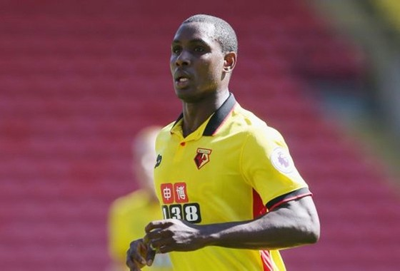 Fernandes đến để hợp tác chứ không để thay Pogba ảnh 1