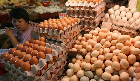 Trứng nhiễm thuốc trừ sâu từ châu Âu lan sang châu Á ảnh 1