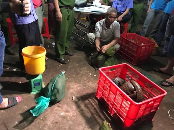 Bắt đối tượng buôn bán động vật hoang dã quý hiếm số lượng lớn ảnh 2
