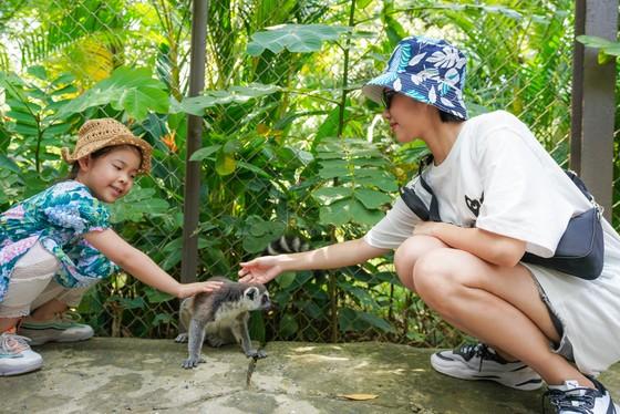 """Dàn sao Việt """"đại náo"""" Vinpearl Land và Safari Phú Quốc   ảnh 3"""