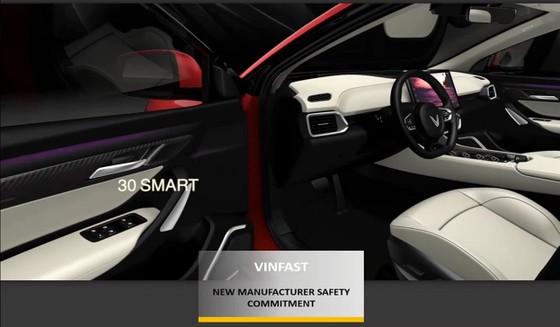 Giải thưởng VinFast mới đạt được từ ASEAN NCAP có ý nghĩa thế nào? ảnh 1