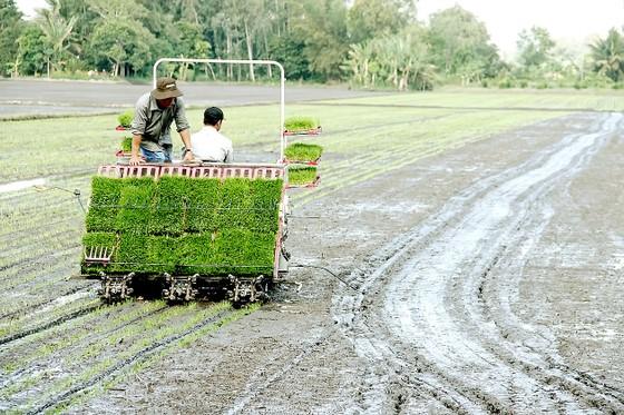 Nông nghiệp là thước đo sự bền vững của quốc gia ảnh 2