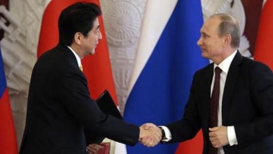 Nhật Bản, Nga thành lập nhóm kinh doanh chung trên các đảo tranh chấp ảnh 1