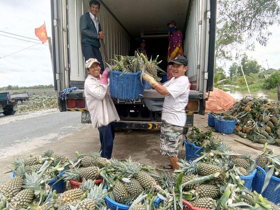 Xuất khẩu rau quả với mục tiêu 4,5 tỷ USD ảnh 1