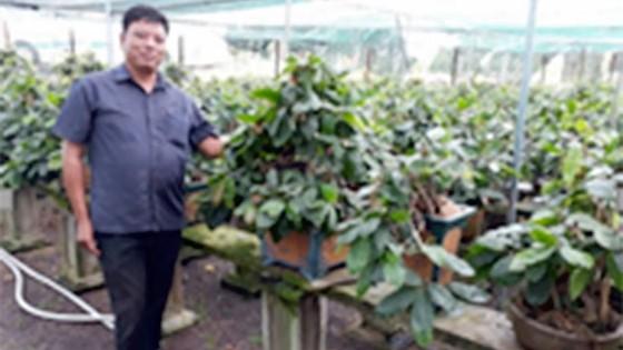 Làm giàu với nghề trồng hoa, cây kiểng ảnh 1