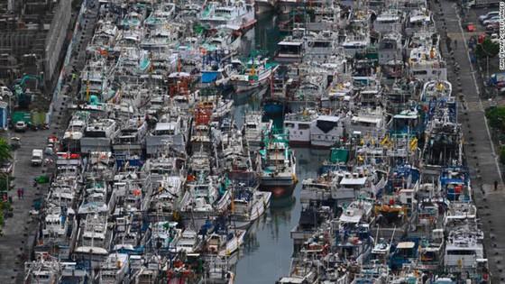 Bão Lekima đổ vào Đông Nam Trung Quốc, hàng trăm nghìn người phải sơ tán ảnh 5