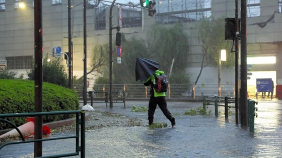 Siêu bão Faxai đổ bộ Nhật Bản, giao thông nhiều nơi tê liệt ảnh 10