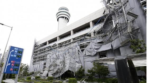 Siêu bão Faxai đổ bộ Nhật Bản, giao thông nhiều nơi tê liệt ảnh 6