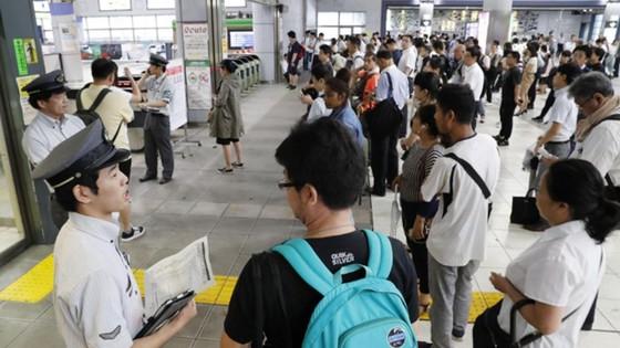 Siêu bão Faxai đổ bộ Nhật Bản, giao thông nhiều nơi tê liệt ảnh 7