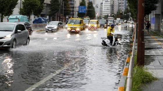 Siêu bão Faxai đổ bộ Nhật Bản, giao thông nhiều nơi tê liệt ảnh 8