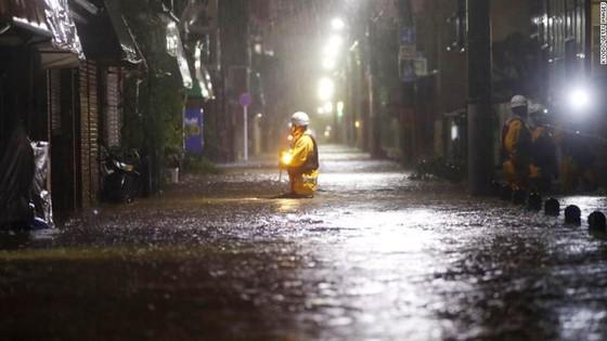 Nhật Bản tan hoang sau siêu bão Hagibis ảnh 5