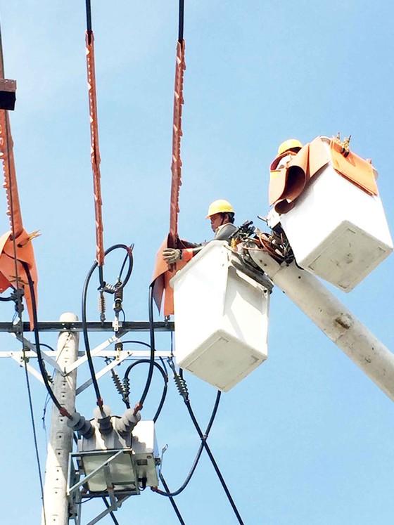 Điện lực TPHCM nỗ lực trở thành doanh nghiệp số ảnh 1