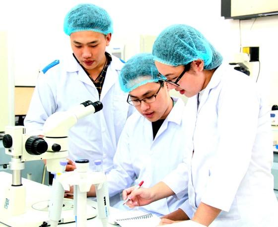 Việt Nam nhảy vọt trong công bố quốc tế ảnh 1