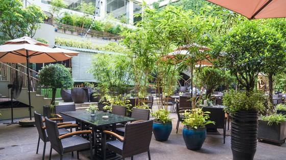 Khách sạn Rex Sài Gòn triển khai các khuyến mãi kích cầu sử dụng dịch vụ ảnh 4
