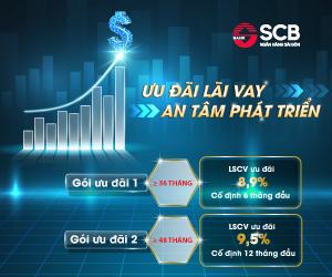 SCB triển khai gói vay ưu đãi chỉ 8,9%/năm dành cho doanh nghiệp ảnh 1