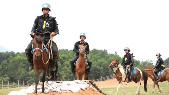 Đoàn kỵ binh trên thao trường ảnh 4