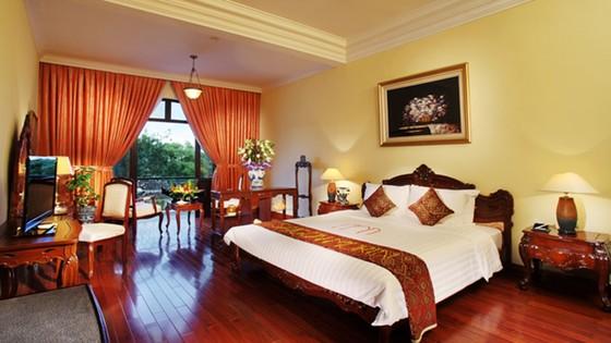 Saigontourist Group tiếp tục khuyến mãi lớn năm 2020 ảnh 2