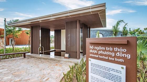 Minera Hot Springs Bình Châu, nơi hội tụ tinh hoa của tắm khoáng trên thế giới ảnh 4