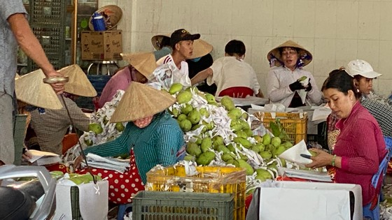 Trái cây Việt tự tin xuất ngoại ảnh 1