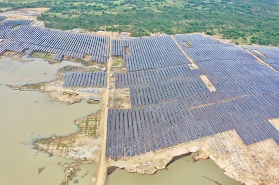T&T Group đồng loạt hòa lưới 3 nhà máy điện mặt trời ảnh 1