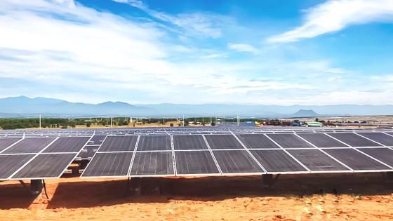 T&T Group đồng loạt hòa lưới 3 nhà máy điện mặt trời ảnh 2