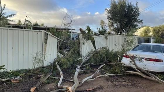 Bão Seroja gây thiệt hại nghiêm trọng tại Australia ảnh 3