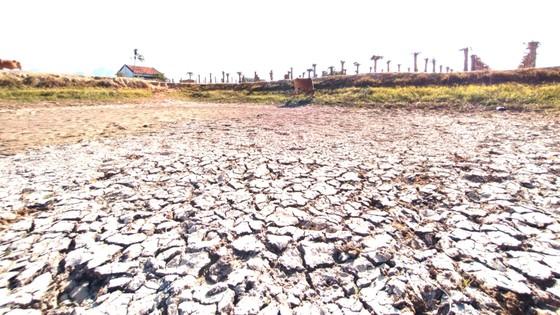 Tây Nguyên - Nam Trung bộ ứng phó nguy cơ sa mạc hóa - Bài 1: Suy kiệt nguồn nước ảnh 1