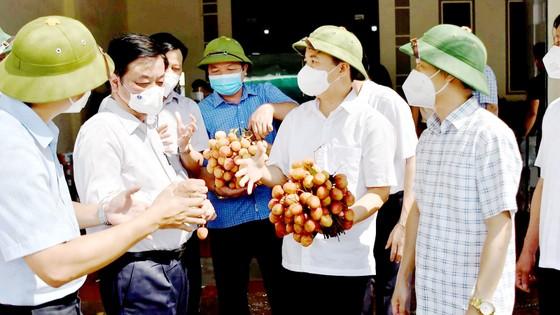 Các đơn vị đang nỗ lực tuyên truyền tiêu thụ vải thiều Bắc Giang