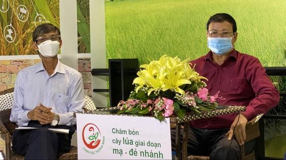 Tư vấn trực tuyến để chuyển giao kỹ thuật canh tác cho nông dân trồng lúa vùng ĐBSCL ảnh 1
