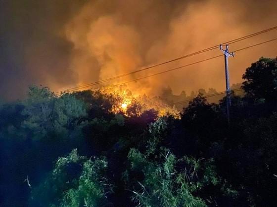 Thừa Thiên - Huế cùng lúc xảy ra nhiều vụ cháy rừng ảnh 5