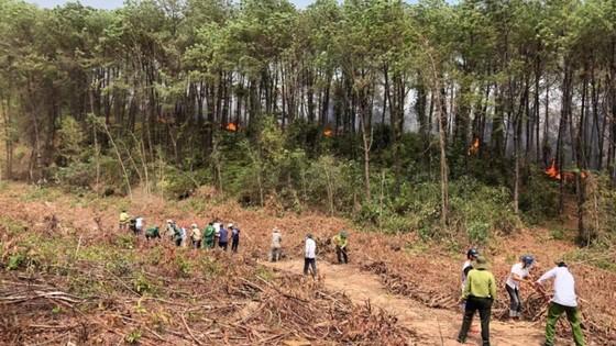 Thừa Thiên - Huế cùng lúc xảy ra nhiều vụ cháy rừng ảnh 3