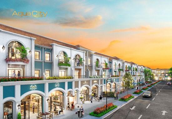 Tiềm năng hiếm có phân khu cửa ngõ đô thị Aqua City ảnh 1