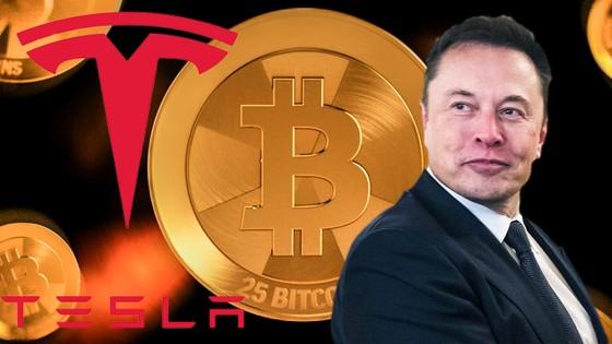 Bitcoin đang bị Elon Musk đạp đổ chỉ bằng vài dòng Tweet ảnh 1