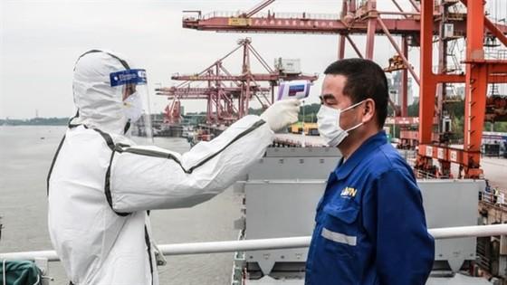 Thủy thủ nhiễm Covid-19 và sự hỗn loạn trong ngành vận chuyển toàn cầu ảnh 5